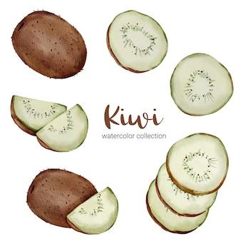 Kiwi w kolekcji akwareli, pełne owoców i pokrojone na kawałki