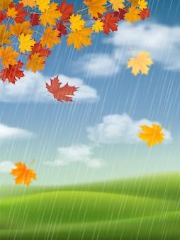 Klon, jesienny krajobraz i deszcz.