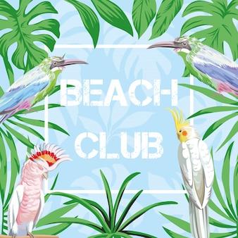 Klub plażowy napis z ilustracji ptaków i liści niebieski