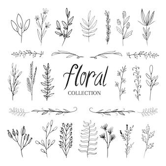 Kobieca kolekcja kwiatów ręcznie rysowane na przegrodę i ozdobną ramkę na logo