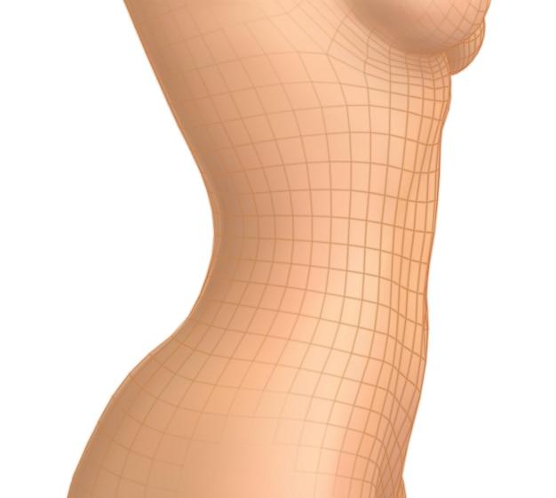 Kobiece ciało na białym tle. fotorealistyczna siatka