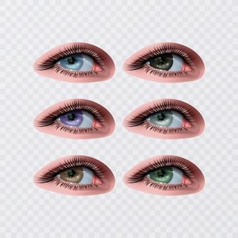 Kobiece oczy do projektowania glamour zdrowia. kolory niebieski, zielony i brązowy. otwarte oczy kobiety