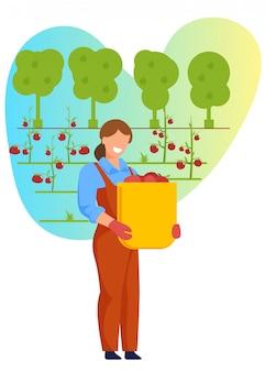 Kobieta chwyta kosz z dojrzałymi owoc lub warzywami