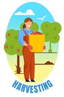 Kobieta rolnik trzyma kosz z dojrzałym jabłkiem w ogrodzie
