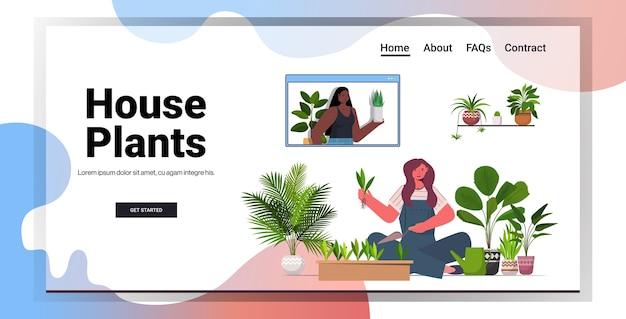 Kobieta sadząca rośliny doniczkowe w doniczce gospodyni dbająca o swoje rośliny wnętrze salonu pozioma kopia przestrzeń