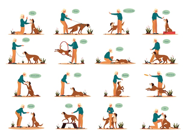 Kobieta trenuje zestaw psa. kolekcja szczęśliwy szczeniak o lekcji polecenia. dobry trener outdoorowy. usiądź, zostań i wydaj komendę łapą.
