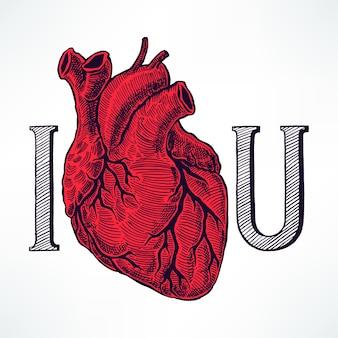 Kocham cię ilustrację z pięknym ludzkim sercem.