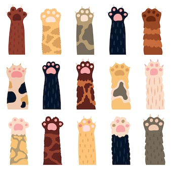 Kocie łapy. śliczny kotek łapa, doodle zabawny kot domowy futro nogi, ślady kociaka domowego, zestaw ikon ilustracji pazurami łapy zwierząt domowych. kociak przyjazny łapom, domowy puszysty różnorodny