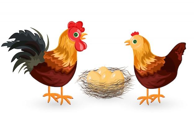 Kogut, kurczak i jajka w gnieździe
