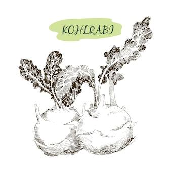 Kohlraby