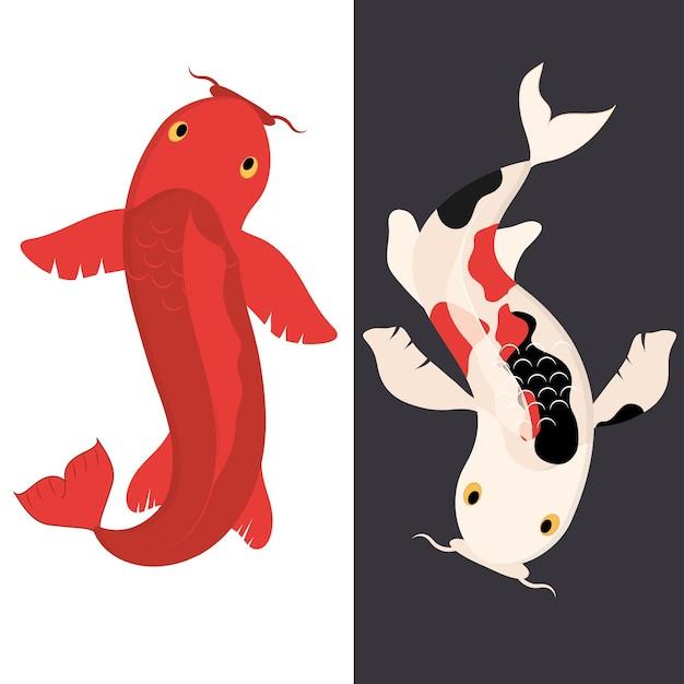 Koi ryby japońskie