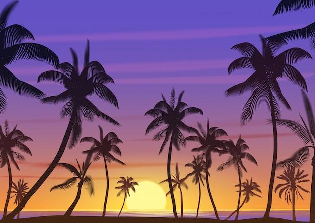 Kokosowi drzewka palmowe przy zmierzchem lub wschodu słońca krajobrazem