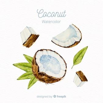 Kokosowy tło akwarela