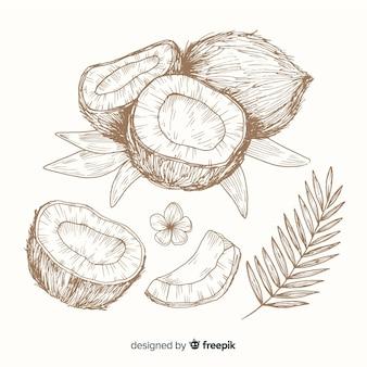 Kokosowy tło bezbarwny ręka rysujący