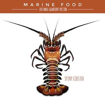 Kolczasty homar. żywność morska