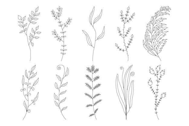 Kolekcja abstrakcyjnych minimalistycznych gałęzi, ziół i roślin. na karty, zaproszenia, projektowanie logo