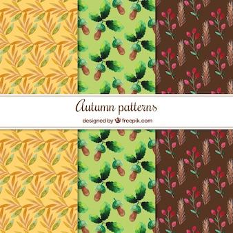 Kolekcja akwarela jesienny wzór
