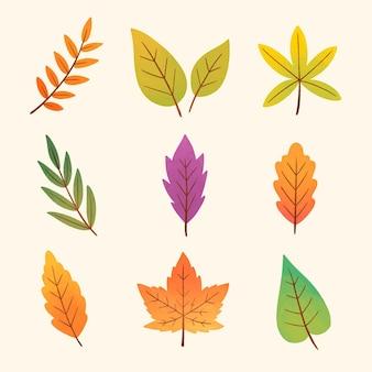 Kolekcja akwarela jesiennych liści