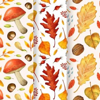 Kolekcja akwarela jesiennych wzorów