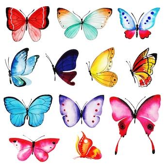 Kolekcja Akwarela Motyli