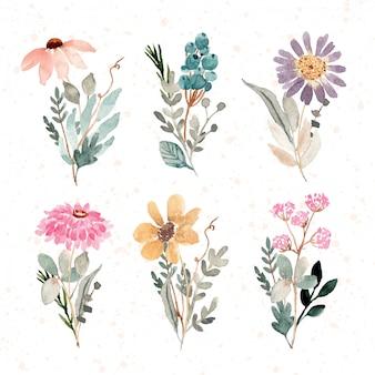Kolekcja akwarela piękny kwiatowy bukiet