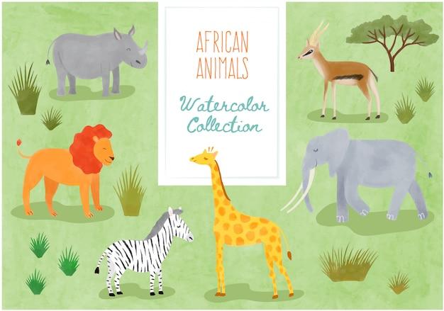 Kolekcja akwarela - słodkie zwierzęta afrykańskie