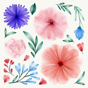 Kolekcja akwarela wiosna kwiatów