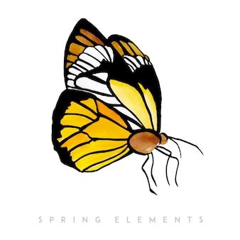 Kolekcja akwarela wiosna motyl