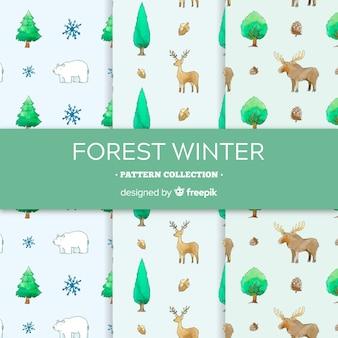 Kolekcja akwarela zimowy wzór
