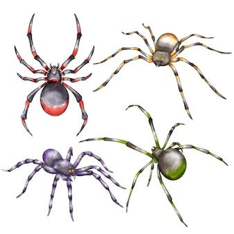 Kolekcja akwareli halloweenowych pająków