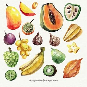 Kolekcja akwareli kawałków owoców