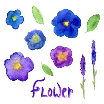 Kolekcja akwareli lawendy i altówki. zestaw fioletowe kwiaty. wektorowa ręka rysująca ilustracja dla zaproszenia