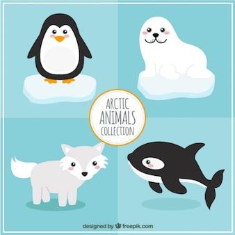 Kolekcja arktyczne zwierzęta