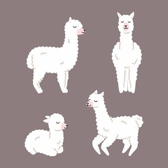 Kolekcja białej lamy alpaki śliczna ilustracja i projekt plakatu do projektowania przedszkola