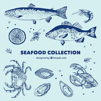 Kolekcja blue seafood