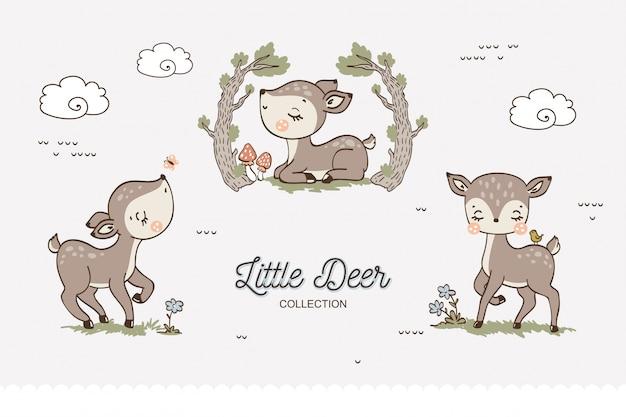 Kolekcja cute baby jelenie.