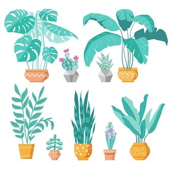 Kolekcja domowych roślin doniczkowych zestaw ikon wektorowych ilustracji wnętrza pojemniki ceramiczne
