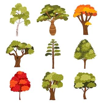 Kolekcja drzew akwarelowych
