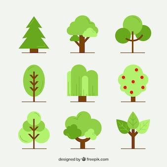 Kolekcja drzew w stylu płaski