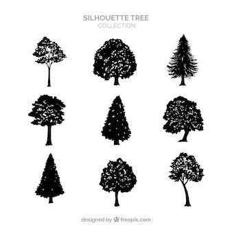 Kolekcja drzewa sylwetki