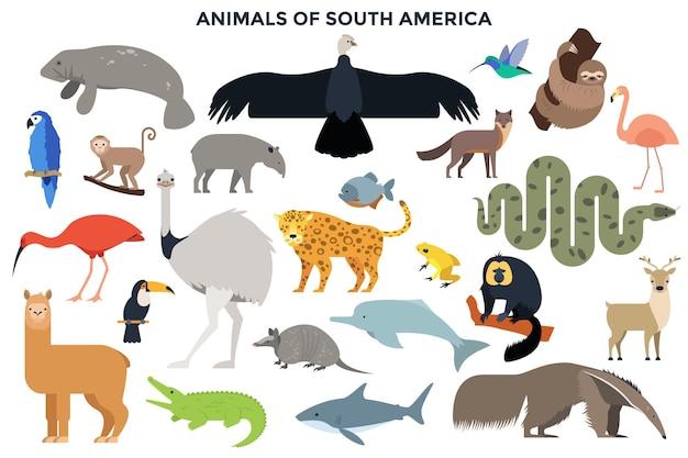 Kolekcja dzikiej dżungli i zwierząt leśnych, ptaków, ssaków morskich, ryb ameryki południowej. pakiet znaków kreskówka na białym tle. ilustracja wektorowa kolorowy w stylu płaski.
