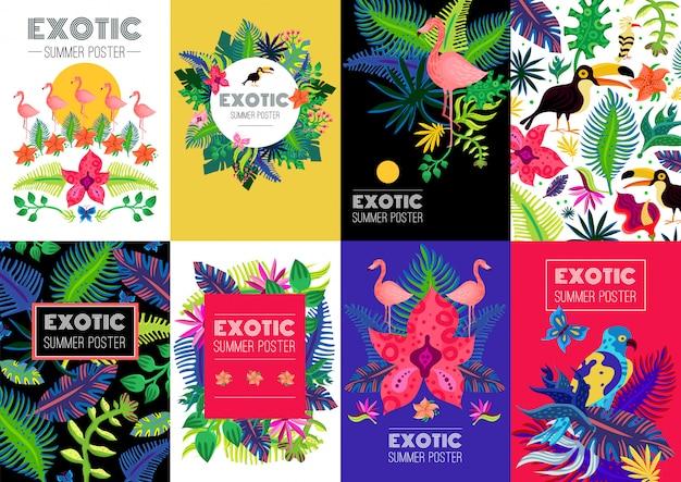 Kolekcja egzotycznych tropikalnych kolorowych banerów