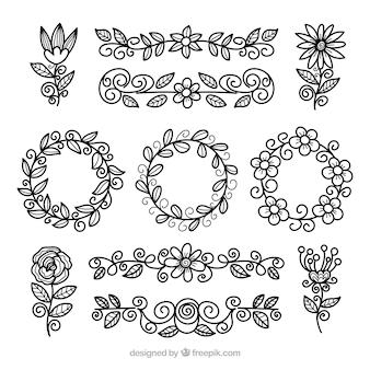 Kolekcja elementów kwiatowych z różnych gatunków