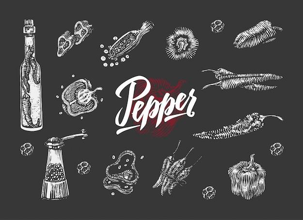 Kolekcja elementów papryki chili