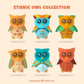Kolekcja etniczna sowa