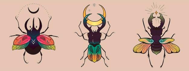Kolekcja fantazyjnych kolorowych chrząszczy do projektowania