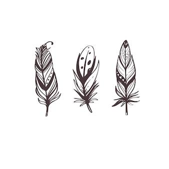 Kolekcja feathers boho