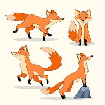Kolekcja fox ręcznie rysowana