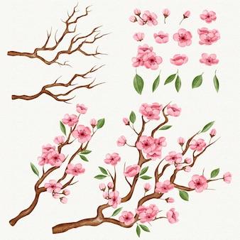 Kolekcja gałęzi sakura