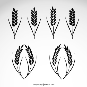 Kolekcja ikon pszenicy